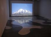 53rd Venice Biennale
