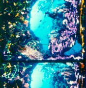 Celluloid. Cameraless Film