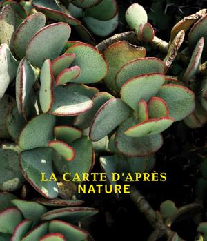 Opening exhibition of Villa Paloma: La carte d'apres Nature