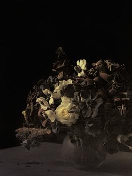 Ori Gersht: Lost in Time - Announcements - e-flux