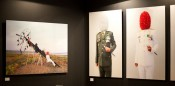 Photographs by Jim Allen Abel on view at D Gallerie, Art Dubai 2012. Courtesy of Art Dubai.