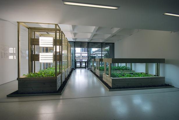 Contemporary Arts Center presents Green Acres