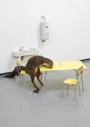 "Maurizio Cattelan, ""Bidibidobidiboo,"" 1996. Taxidermied squirrel, ceramic, formica, wood, paint and steel; 45 x 60 x 58 cm. © Maurizio Cattelan.*"