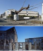 Top: GAM – Galleria Civica d'Arte Moderna e Contemporanea. Photo: Studio Gonella. Bottom: Castello di Rivoli Museo d'Arte Contemporanea. Photo: Paolo Pellion.