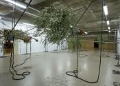 Sensory Spaces 5 – Siobhán Hapaska. Installation view. Photo: Studio Hans Wilschut, Rotterdam.