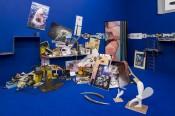 Camille Henrot, The Pale Fox, 2014–15. Exhibition view, Westfälischer Kunstverein, Münster. © ADAGP Camille Henrot. Photo: Thorsten Arendt. Courtesykamel mennour, Paris and Johann König, Berlin.