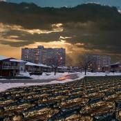 Guillaume Krick & Benjamin Thomas, Toronto-Vaughan (Norfinch), Erosions, North American Suburban Landscapes (detail), 2008–2012. Sound installation. Photo: Guillaume Krick.