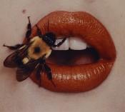 Irving Penn, Bee, New York, 1995, printed 2001. © The Irving Penn Foundation.