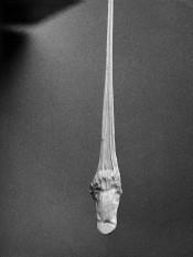 Alina Szapocznikow, Fotorzeźby (Photosculptures) (detail), 1971/2007.*