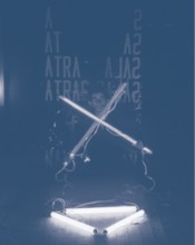Silvestre Pestana, Biovirtual, 1981–87. Colour photograph. Courtesy of the artist.