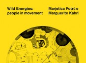 Marguerite Kahrl,Wild Energies, 2011. Detail from PAV sectors.