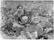 Maria Esayan, Agronomist, Dilijan, Armenia. Photographer and date unknown. Courtesy of Dilijan Centralised Library System.